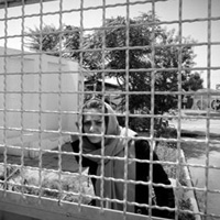نماینده وزارت بهداشت را به مرکز معتادان شفق راه نمی دادند/شفق بوی تعفن میداد