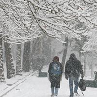 كاهش دمای هوا / بارش برف در تهران ادامه دارد