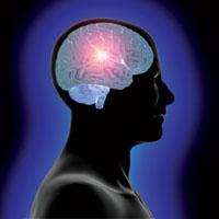 بدن چقدر پس از مرگ مغزی زنده میماند؟