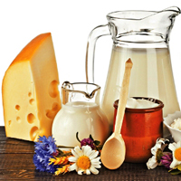استفاده از روغن در شیر و محصولات لبنی خوب یا بد