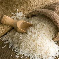 برنجهای مازندران آلوده نیست