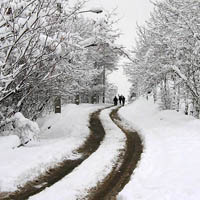 برف و کولاک در گردنههای ۴ استان/ ۲۰۰ نفر در جادهها گرفتار برف شدند