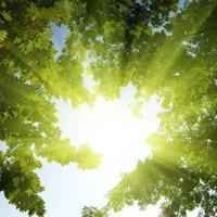 تاثیر نورخورشید بر کاهش فشارخون