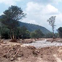 پیام مرگ سد «شفارود» برای جنگلهای گیلان