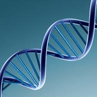 گیلان قطب دهم تشخیص DNA کشور است