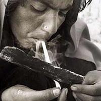 همه چیز درباره مخدر مرگبار «قارچ جادویی»