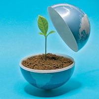 پیشگامی جامعه مدنی برای نجات محیط زیست