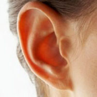 چرا پرده گوش پاره می شود ؟