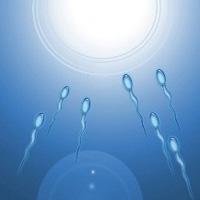 تقویت اسپرم با غذا