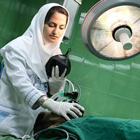 سالانه ۳۰۰ پرستار از کشور مهاجرت میکنند