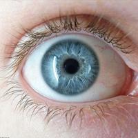 چرا چشمها از ترس گشاد میشوند؟