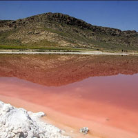 عکس/دریاچه مهارلوی شیراز قرمز شد
