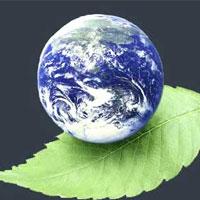 فاجعه زیست محیطی تا 15 ساله آینده