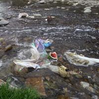 عکس/رودخانه کرج محل دفن زباله های شهری و صنعتی / مسئولان پیش از گرم شدن هوا زبالههای حاشیه رودخانه را ساماندهی کنند
