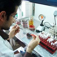 آزمایشگاهها در سراشیبی،بیماران در سربالایی