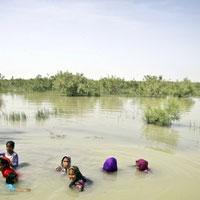 شادمانی معصومه ابتکار به خاطر بازگشت آب به هامون