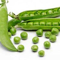 نخود سبز، دشمن سرطان