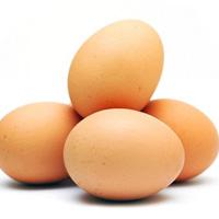 مصرف تخم مرغ برای سلامت این عضو بدن ضروریست
