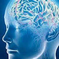 اسراری از مغز مبتلایان به اختلالات روانی