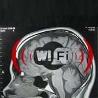 آیا WiFi برای سلامتی شما و کودکان شما خطرساز است؟