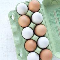 چرا باید تخم مرغ را در یخچال نگهداری کنیم؟