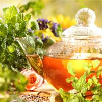 بهترین گیاهان دارویی برای کاهش عوارض یائسگی