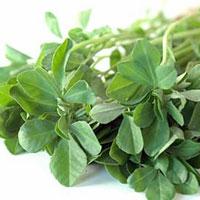 افزایش میل و قدرت جنسی با مصرف این سبزی