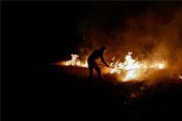 جنگلی که میسوزد، ککی که نمیگزد!/ همه نشستهایم که ایران به «بیابانی بزرگ» تبدیل شود