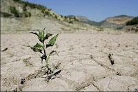 بحران آب؛ ابعاد، ریشهها و راهحلها