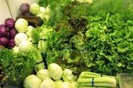 آلودگی مواد غذایی مهمترین عامل شیوع سرطان است
