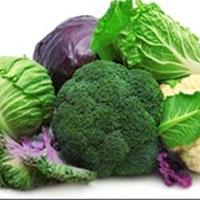 مواد غذایی دوستدار سلامت ریه