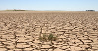 بیابان زایی مشکل عظیم پیش روی محیط زیست ایران