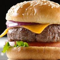 همبرگر انسان را خنگ می کند
