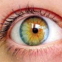 درمان نابینایی با سلولهای بنیادی سطح چشم
