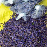 گل گاوزبان، تقویتکننده کلیهها