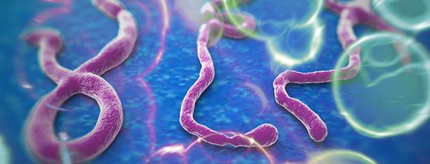 ایبولا تهدید بزرگتری است یا آنفولانزا/چقدر احتمال دارد به ایبولا مبتلا شوید؟