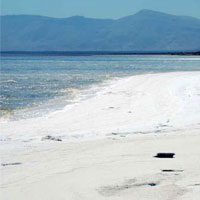 دریاچه ارومیه جان میگیرد؟