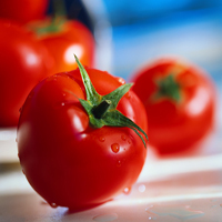 نیترات موجود در گوجه فرنگی با شستن از بین می رود؟