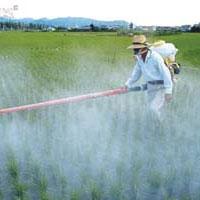 سرطان، محصول تولید ناسالم کشاورزی