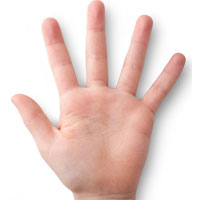 رابطه انگشتان دست با رفتار تهاجمی و خطر ابتلا به بیماریها
