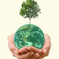 محیط زیست هم قانون دارد و هم نقض قانون
