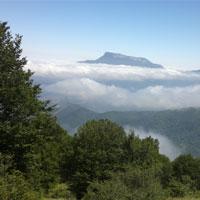 تقدیر از مسولان دولت و محیط زیست برای ارتقای جنگل ابر