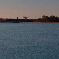 زهر نفت در گلوی خلیج فارس