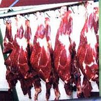 انهدام باند توزيع گوشت الاغ در تهران