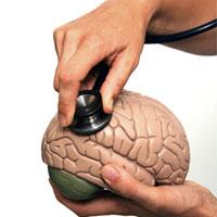 دکمه تنظیم مجدد مغز کجاست؟