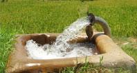 بارانهای بهاری ثابت کرد مشکل از کشاورزی است!