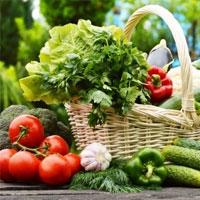 سبزیجات غنی از پروتئین را بشناسید