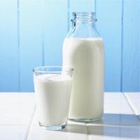 مصرف شیر مغز را جوان نگه می دارد
