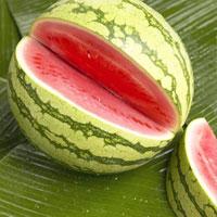 هورمون رشد به هندوانه رسید!
