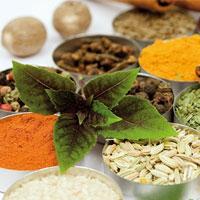 گیاهان مؤثر در درمان ورم معده